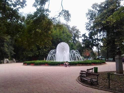 blogulunuiconcitadin.wordpress.com-foto.arteziană